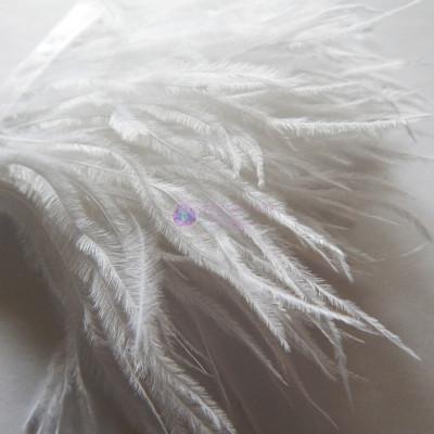 Страусиные перья на ленте Белые 8-11 см